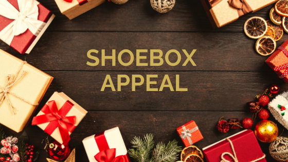 purple-balm-shoebox-charity-appeal-devon